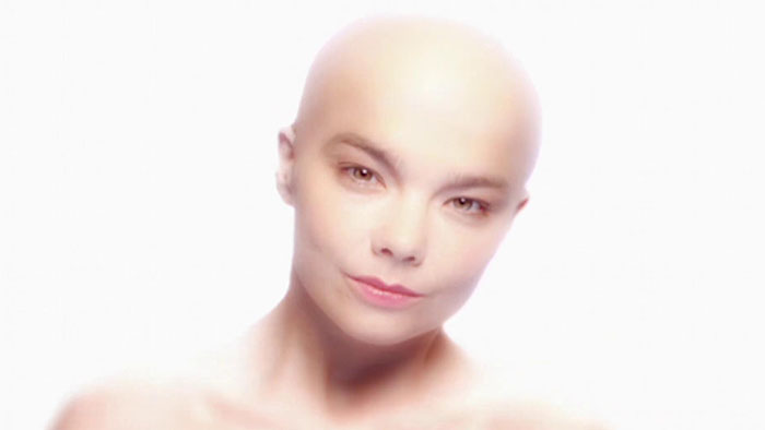 bjork - hunter (HD)